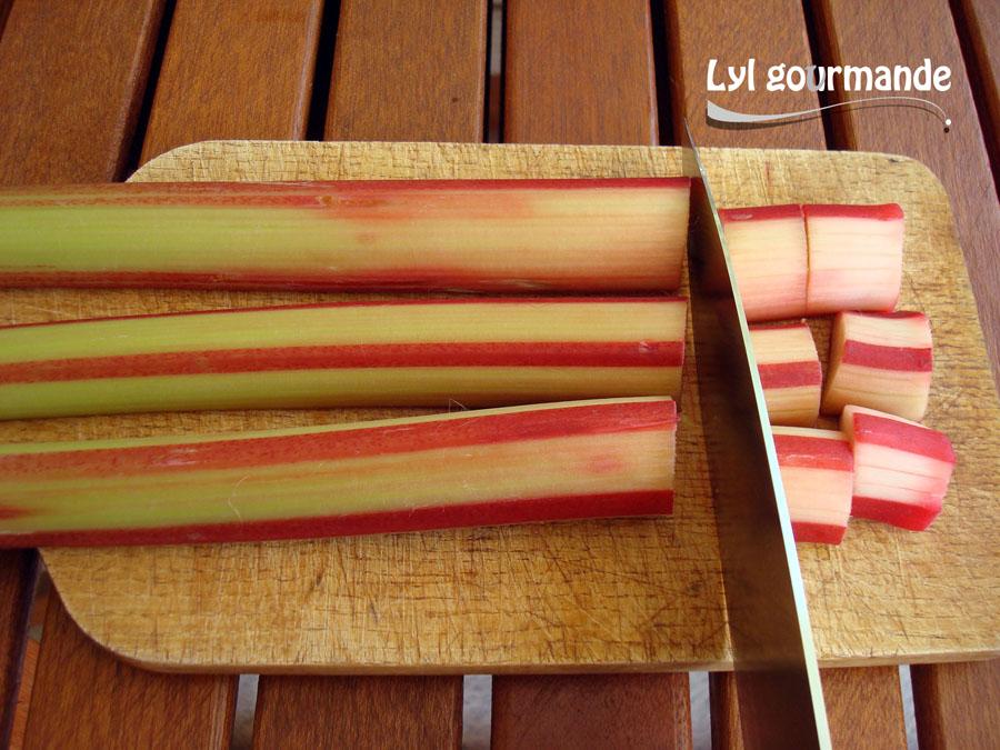 Tarte rhubarbe (6)
